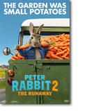 Peter Rabbit 2 Poster